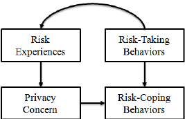 Analyze the risk in the use of the websites